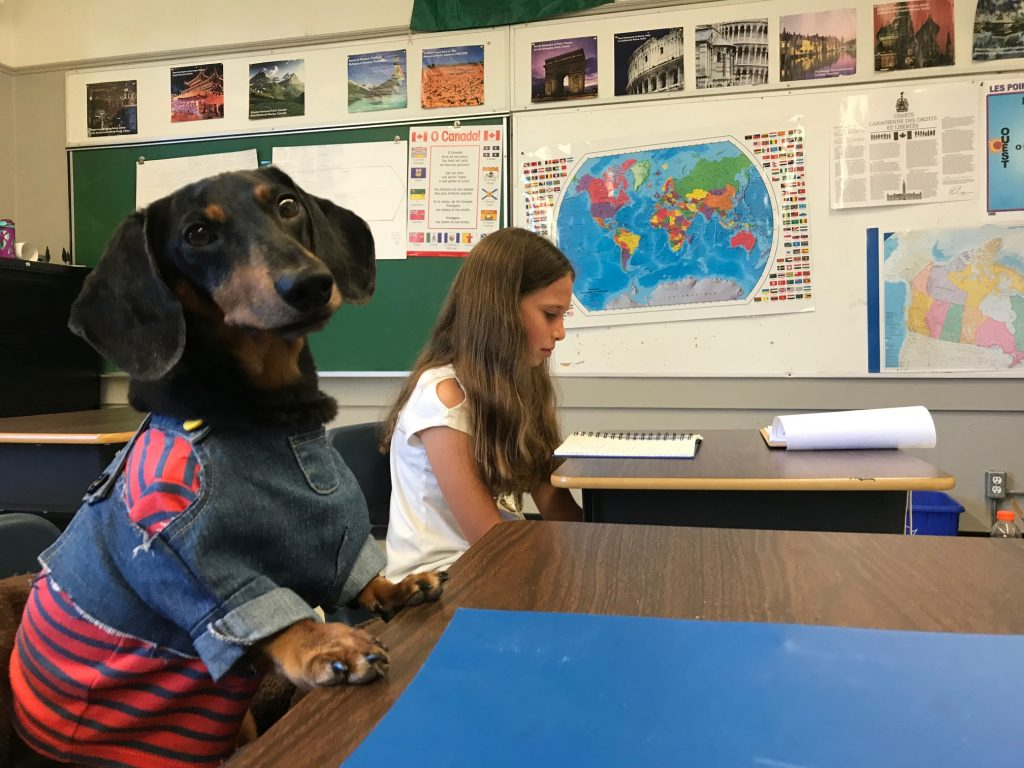 oakley goes to school