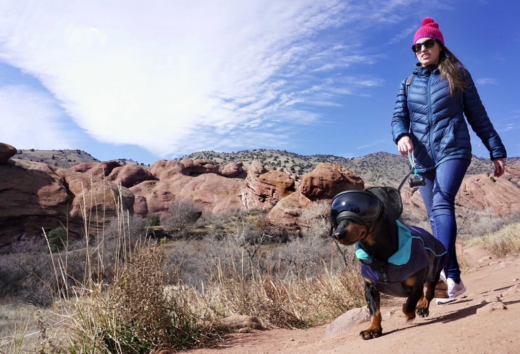 hiking red rocks park colorado dog