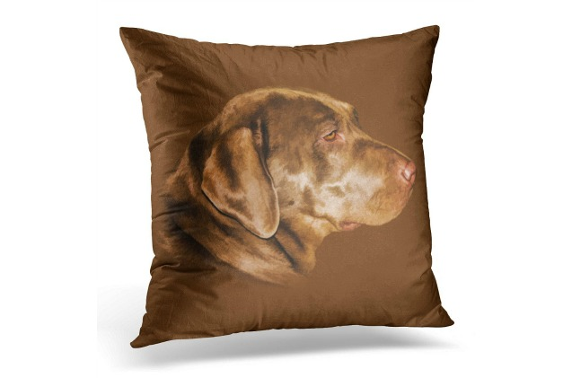 This Labrador Retriever pillow cover is beautiful