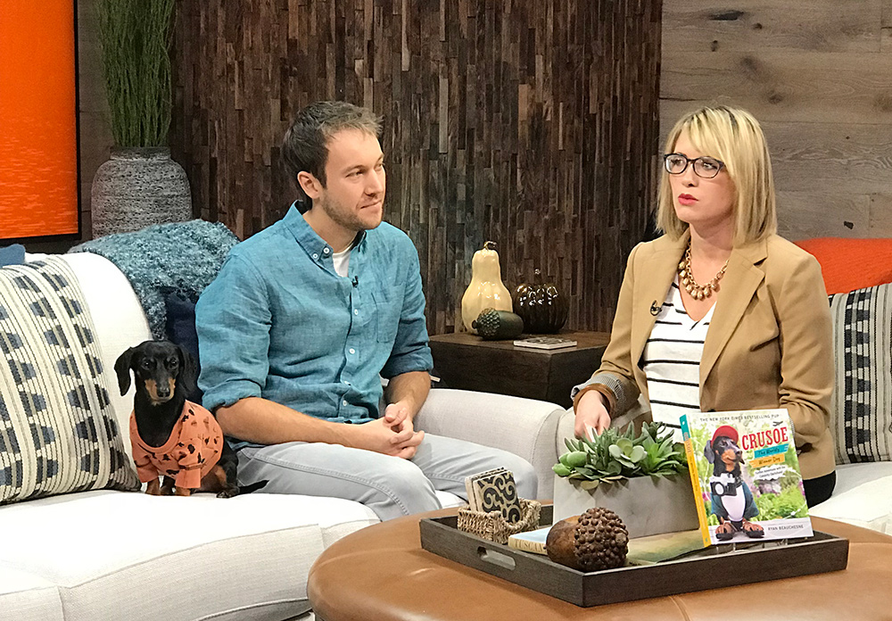 crusoe the celebrity dachshund on talk show interview